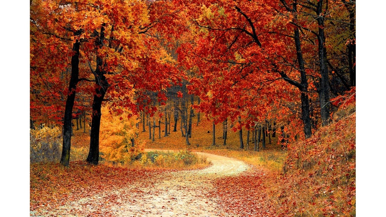 When fall foliage will peak this year for West fall