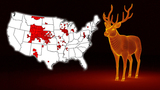 CDC fears 'zombie deer disease' spreading in US could infect humans